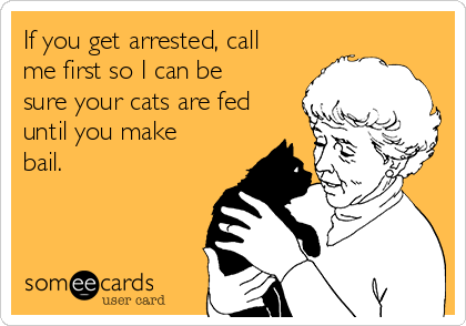 If you get arrested, call me first so I can be sure your cats are fed until you make bail.