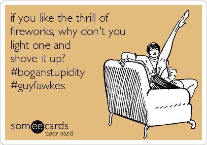if you like the thrill of fireworks, why don't you light one and shove it up? #boganstupidity #guyfawkes