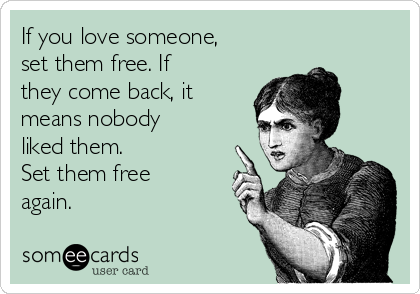 If you love someone, set them free. If they come back, it means nobody liked them. Set them free again.