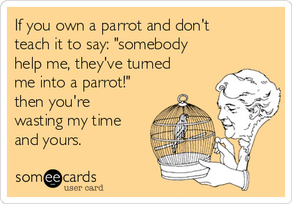 "If you own a parrot and don't teach it to say: ""somebody help me, they've turned me into a parrot!"" then you're wasting my time and yours."