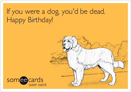 If you were a dog, you'd be dead. Happy Birthday!