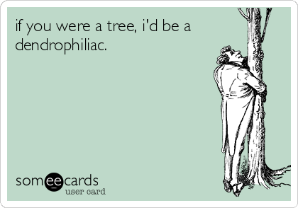 if you were a tree, i'd be a dendrophiliac.