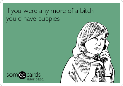 If you were any more of a bitch, you'd have puppies.