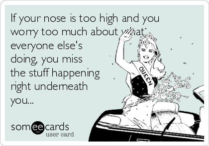 If your nose is too high and you worry too much about what everyone else's doing, you miss the stuff happening right underneath you...