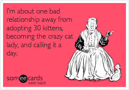 I'm about one bad relationship away from adopting 30 kittens, becoming the crazy cat lady, and calling it a day.