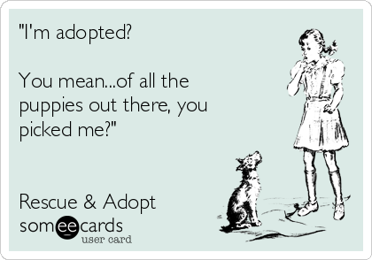 """""""I'm adopted?   You mean...of all the puppies out there, you picked me?""""   Rescue & Adopt"""