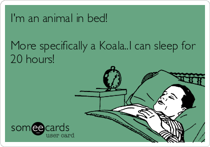 I'm an animal in bed!  More specifically a Koala..I can sleep for 20 hours!