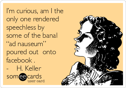 "I'm curious, am I the only one rendered speechless by some of the banal ""ad nauseum"" poured out  onto facebook .  -    H. Keller"