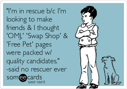 """""""I'm in rescue b/c I'm  looking to make friends & I thought 'OMJ,' 'Swap Shop' & 'Free Pet' pages  were packed w/ quality candidates."""" -said no rescuer ever"""