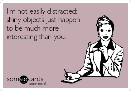I'm not easily distracted; shiny objects just happen to be much more interesting than you.