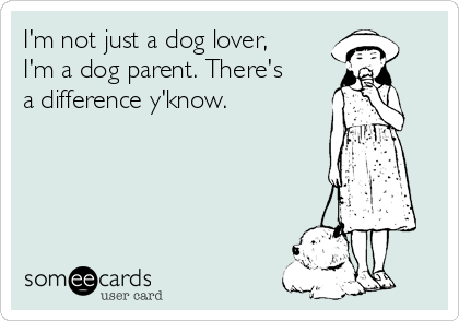 I'm not just a dog lover, I'm a dog parent. There's a difference y'know.