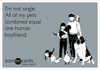 I'm not single.   All of my pets combined equal one human boyfriend.