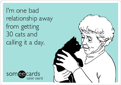 I'm one bad relationship away from getting   30 cats and calling it a day.