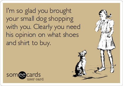 I'm so glad you brought your small dog shopping with you. Clearly you need his opinion on what shoes and shirt to buy.