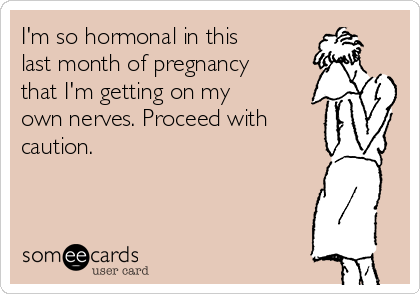 I'm so hormonal in this  last month of pregnancy that I'm getting on my own nerves. Proceed with caution.