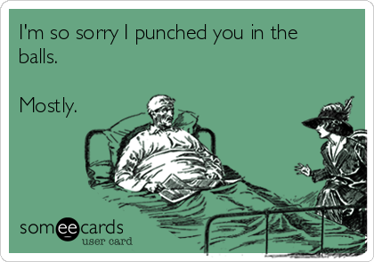 I'm so sorry I punched you in the balls.  Mostly.