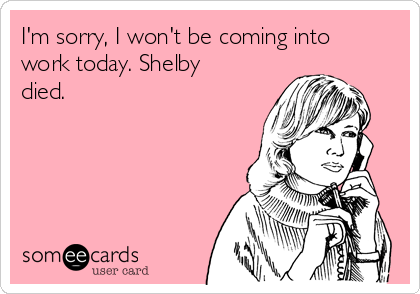 I'm sorry, I won't be coming into work today. Shelby died.