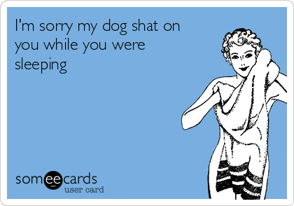 I'm sorry my dog shat on you while you were sleeping