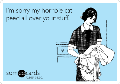 I'm sorry my horrible cat peed all over your stuff.
