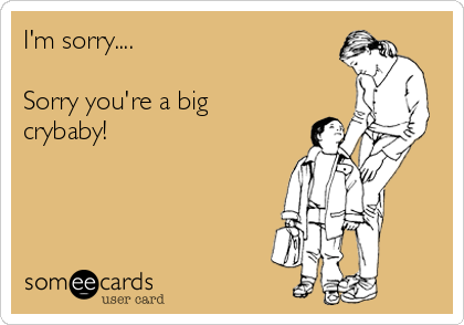 I'm sorry....   Sorry you're a big crybaby!