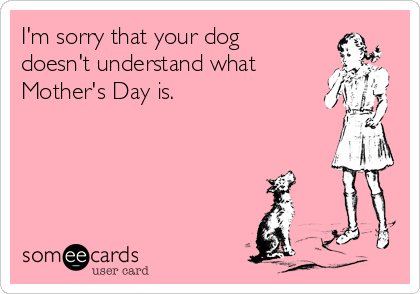 I'm sorry that your dog doesn't understand what Mother's Day is.
