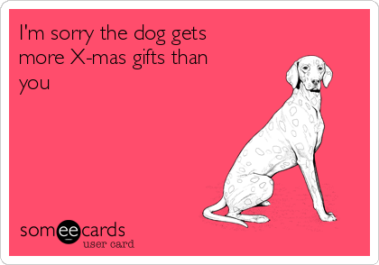 I'm sorry the dog gets more X-mas gifts than you