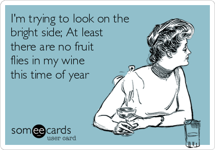I'm trying to look on the bright side; At least there are no fruit flies in my wine this time of year