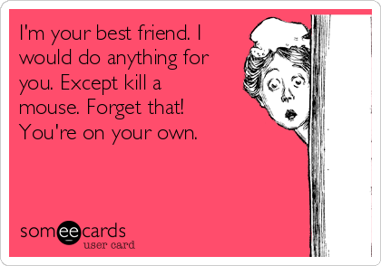 I'm your best friend. I would do anything for you. Except kill a mouse. Forget that!  You're on your own.