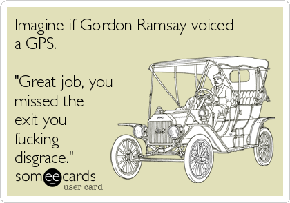 "Imagine if Gordon Ramsay voiced a GPS.  ""Great job, you missed the exit you fucking disgrace."""