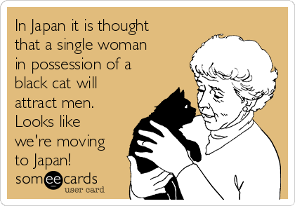 In Japan it is thought that a single woman in possession of a black cat will attract men. Looks like we're moving to Japan!