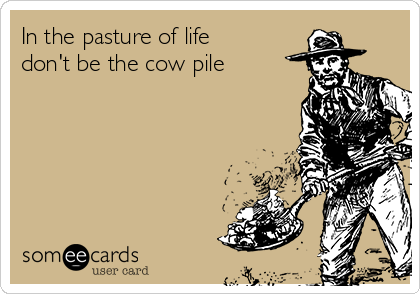 In the pasture of life don't be the cow pile