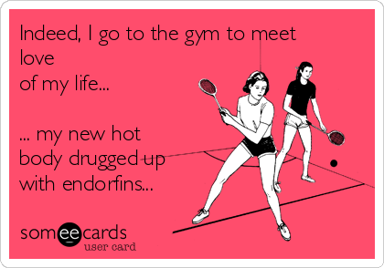 Indeed, I go to the gym to meet love  of my life...  ... my new hot body drugged up with endorfins...