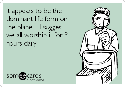 It appears to be the dominant life form on the planet.  I suggest we all worship it for 8 hours daily.