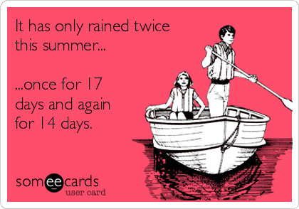 It has only rained twice this summer...  ...once for 17 days and again for 14 days.