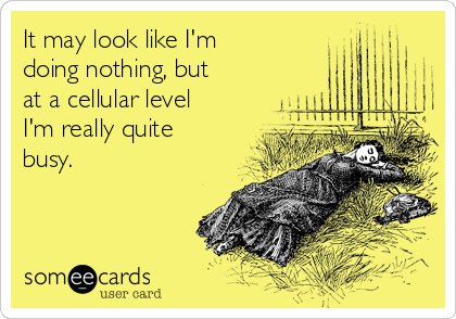 It may look like I'm  doing nothing, but at a cellular level I'm really quite busy.