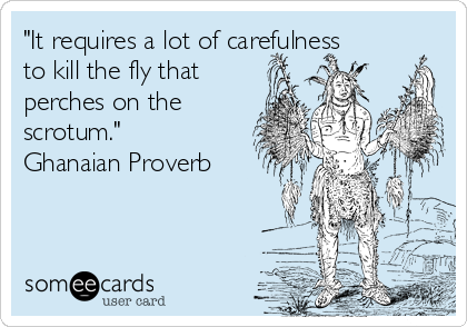 """""""It requires a lot of carefulness to kill the fly that perches on the scrotum."""" Ghanaian Proverb"""
