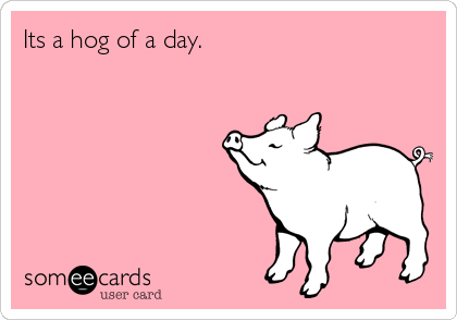 Its a hog of a day.