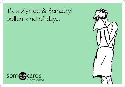 It's a Zyrtec & Benadryl pollen kind of day...