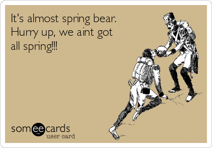 It's almost spring bear.  Hurry up, we aint got all spring!!!