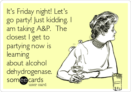 It's Friday night! Let's go party! Just kidding. I am taking A&P.  The closest I get to partying now is learning  about alcohol dehydrogenase.