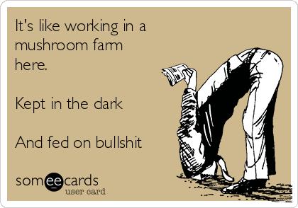 It's like working in a mushroom farm here.  Kept in the dark  And fed on bullshit