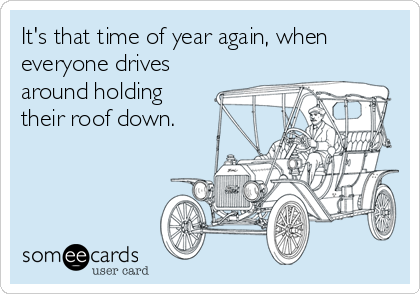 It's that time of year again, when everyone drives around holding their roof down.