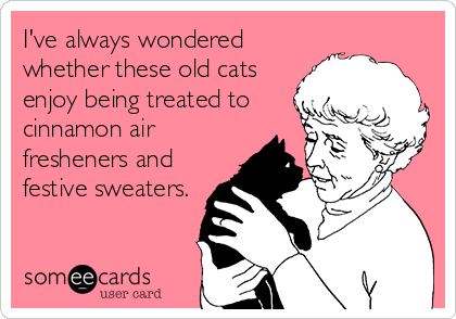 I've always wondered whether these old cats enjoy being treated to cinnamon air fresheners and festive sweaters.