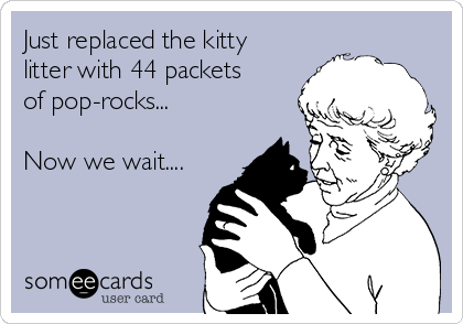 Just replaced the kitty litter with 44 packets of pop-rocks...  Now we wait....