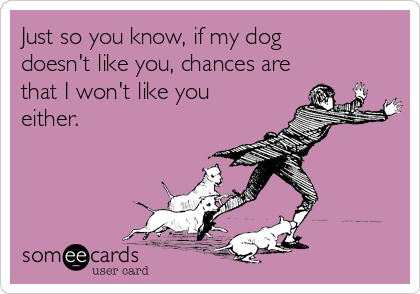 Just so you know, if my dog doesn't like you, chances are that I won't like you either.