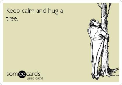 Keep calm and hug a tree.