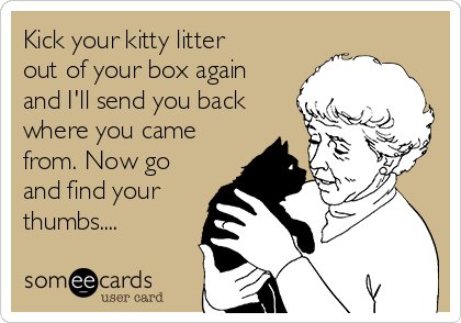 Kick your kitty litter out of your box again and I'll send you back where you came from. Now go and find your thumbs....
