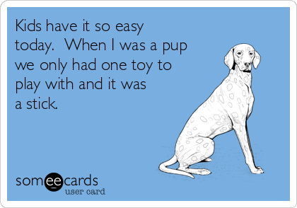 Kids have it so easy today.  When I was a pup we only had one toy to  play with and it was a stick.