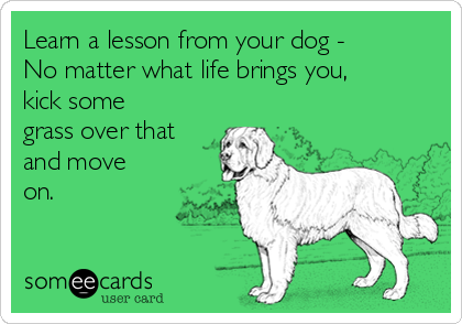 Learn a lesson from your dog - No matter what life brings you kick some  grass over that and move on  Encouragement Ecard