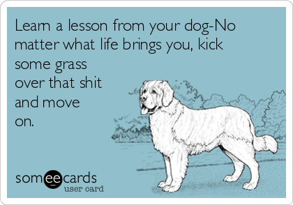 Learn a lesson from your dog-No matter what life brings you, kick some grass over that shit and move on.
